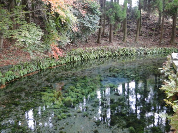 The Shirakawa Fountainhead