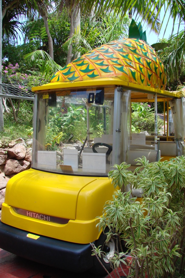 Your pineapple cart awaits ...