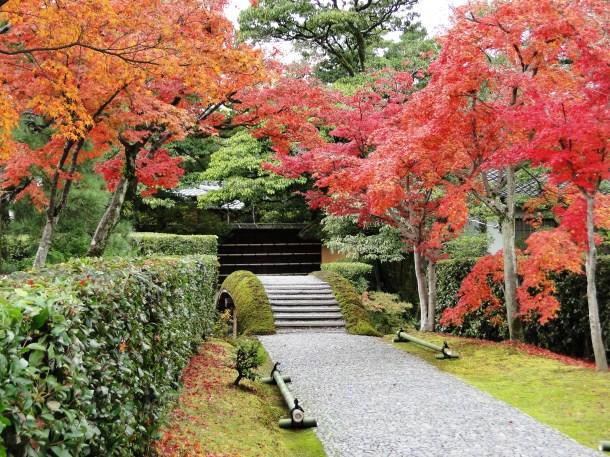 Katsura Rikyu Imperial Villa
