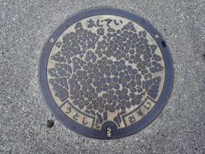 Manhole Monday: Uto