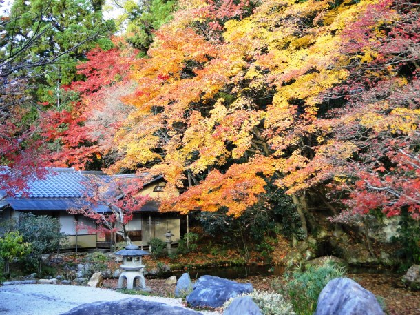 Fall foliage at Nanzen-ji in Kyoto