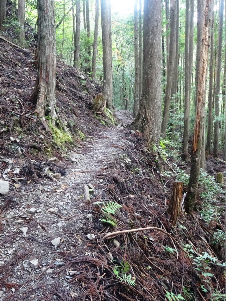 The trail from Yunomine Onsen to the main Nakahechi Trail