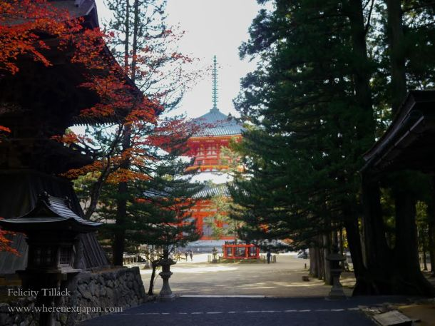 Koyasan (Photo Credit: Felicity Tillack of Where Next Japan)