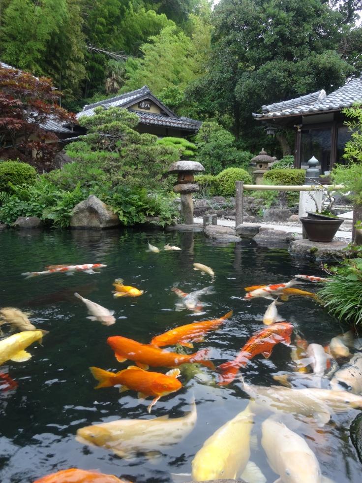 The garden behind Yakumo-an