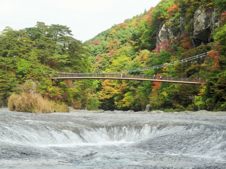 The view of the suspension bridge