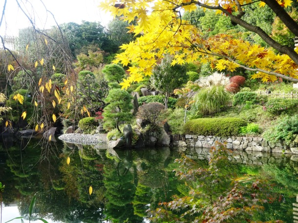 The pond at Mejiro Garden