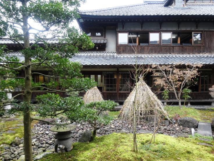 A garden between the buildings