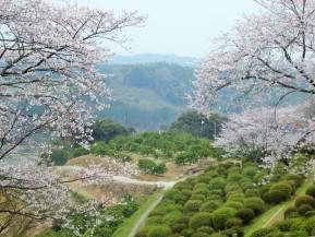 Spotlight: Tabaruzaka Battlefield(Kumamoto)