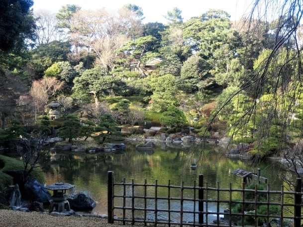 Garden rest Sakura (38)