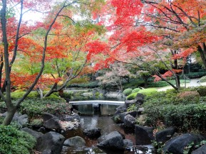 Great Gardens: Otaguro Park(Tokyo)